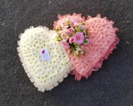 Pink double based hearts