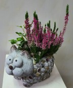 kitty cat planter