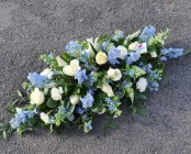 Blue and white casket spr